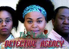the ladies detective agency