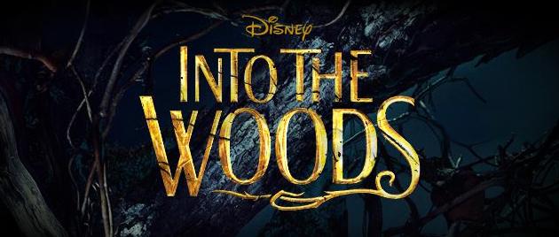 INTO THE WOODS – Promenons Nous dans les Bois (2015)