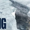 THE THING (2011) 1er Partie