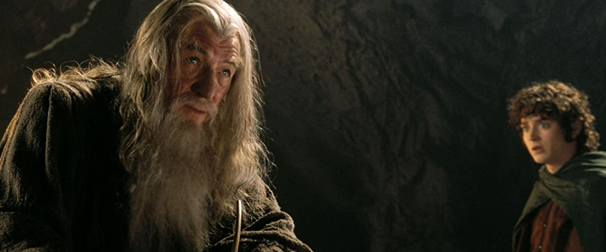 THE LORD OF THE RINGS - THE FELLOWS HIP OF THE RING (2001)
